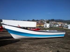 Vendo bote de fibra star line semi nuevo